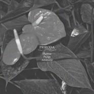 PRIRODA - Plantae Fungi Animalia